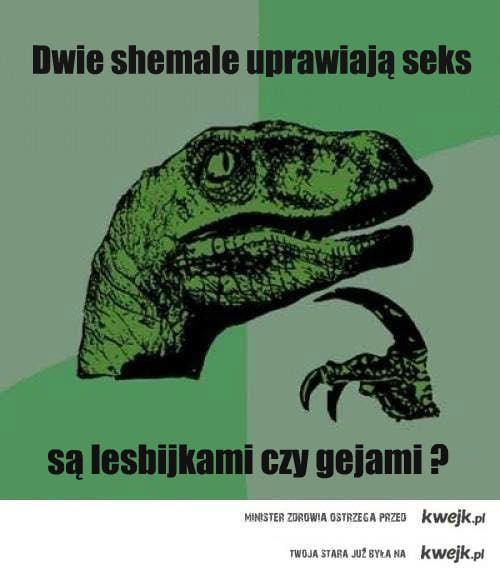 geje czy lesbijki?