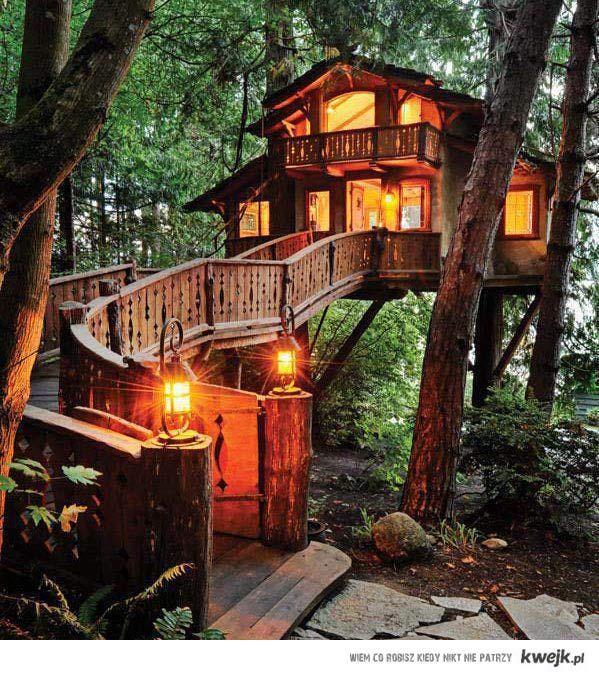 Hotel w Amazonii