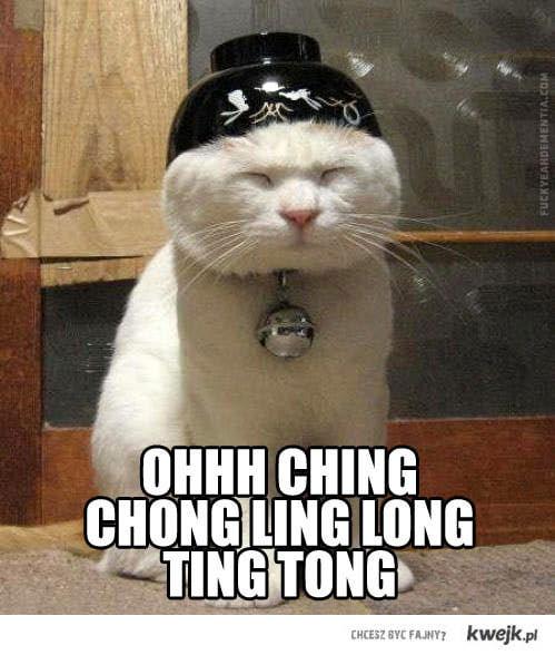 chińskie kotałke