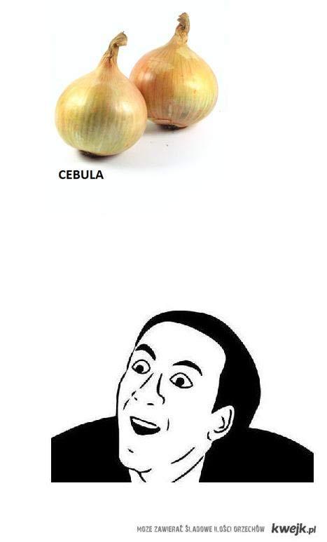 Cebula