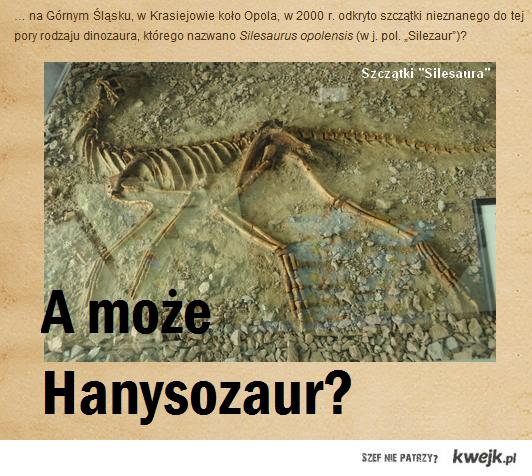 Hanysozaur