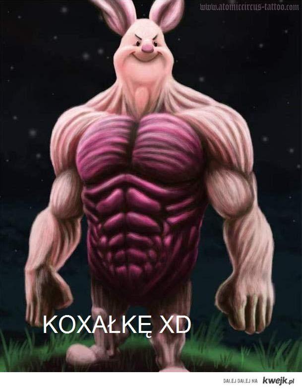 KOXAŁKĘ XD