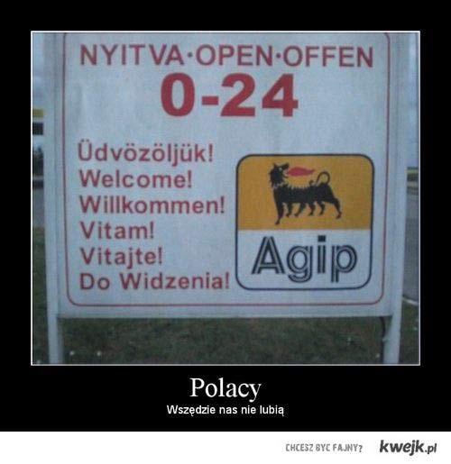 nielubiani Polacy