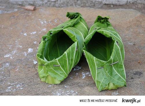 buty z kapusty