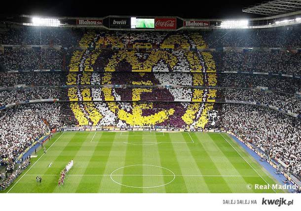 One Passion!