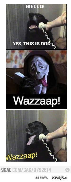 WAZZAAP