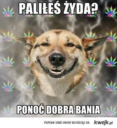 paliles