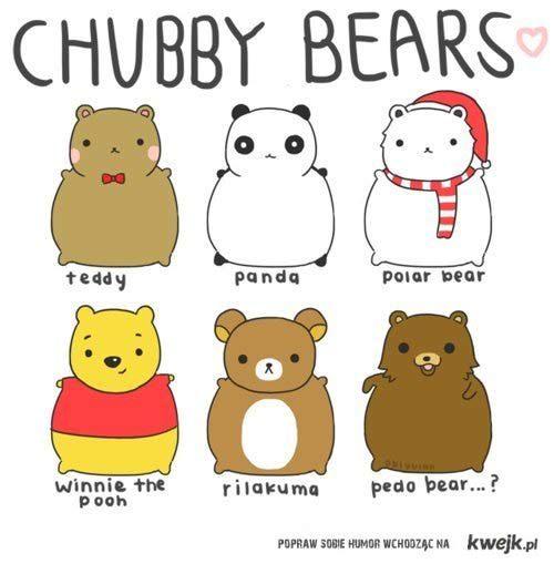 cute chubby bears