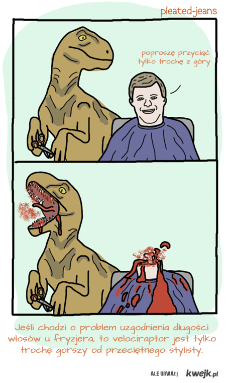 problem u fryzjera
