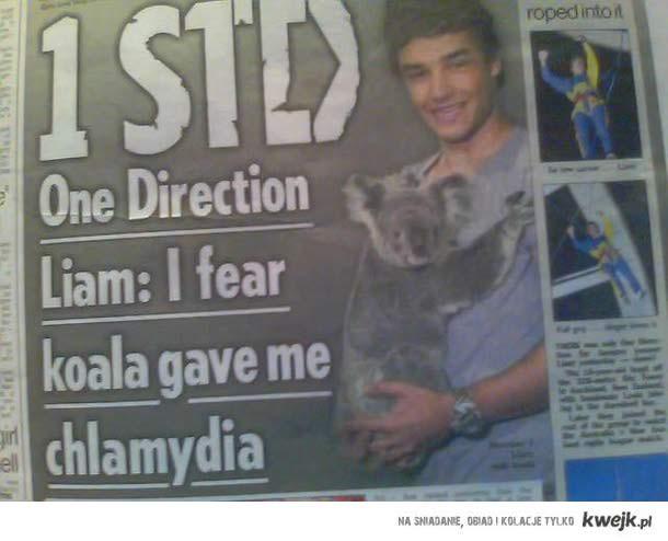One Direction - Koala