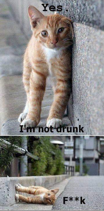 pijany