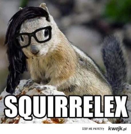 squirllex