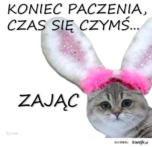 Czym by się tu, w Wielkanoc, ZAJĄC