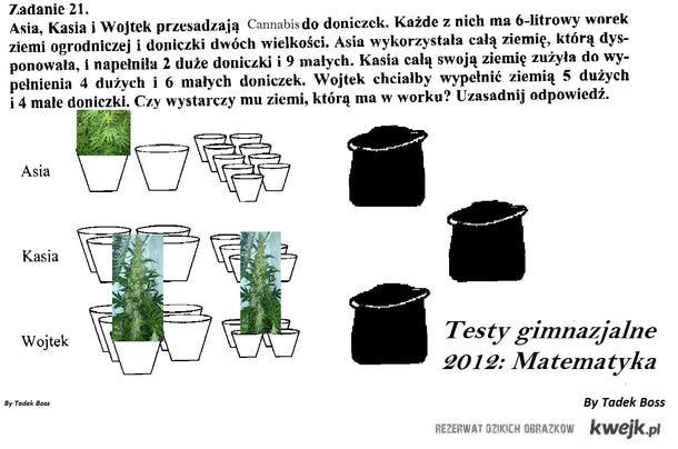 Testy gimnazjalne 2012 Matematyka Cannabis