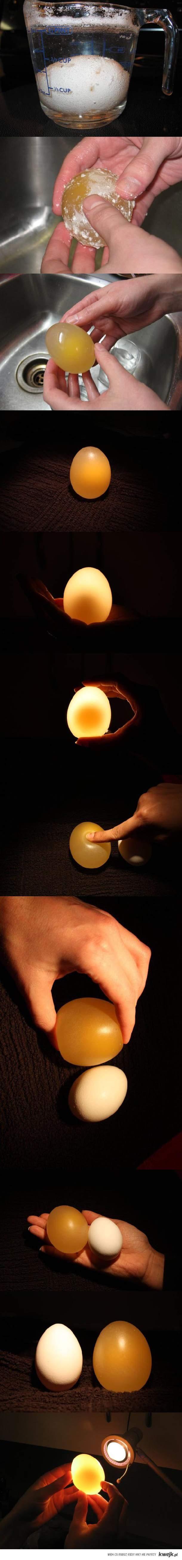 kąpiel jajka w szklance z octem