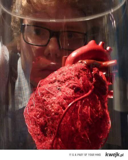 Serce jest , a rozum gdzie ?