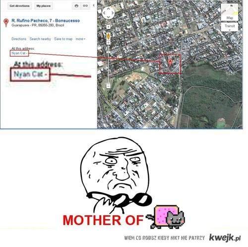 mother of nyan