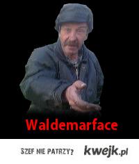 Waldemarface