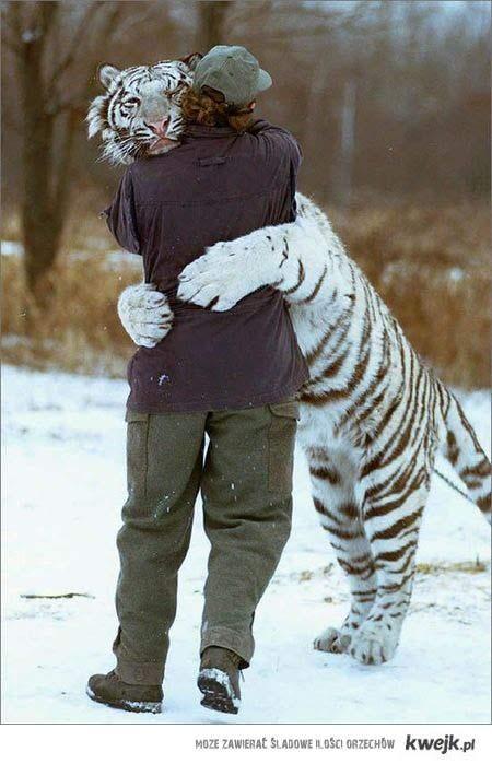 Przytul !