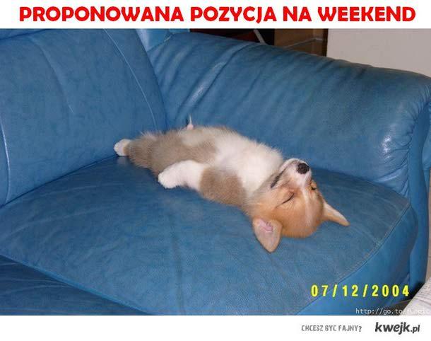 Proponowana pozycja na weekend
