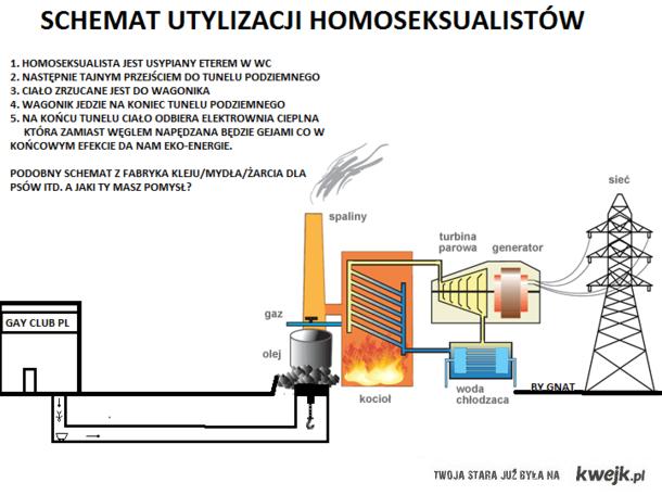 schemat utylizacji homoseksualistow