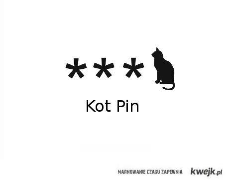 kot pin