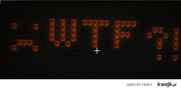 Minecraft WTF?!