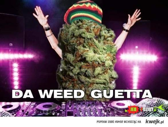 Da weed Guetta