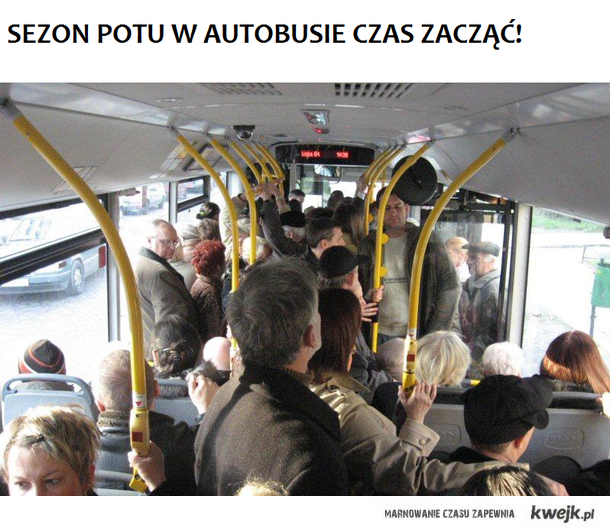 pot z autobusach