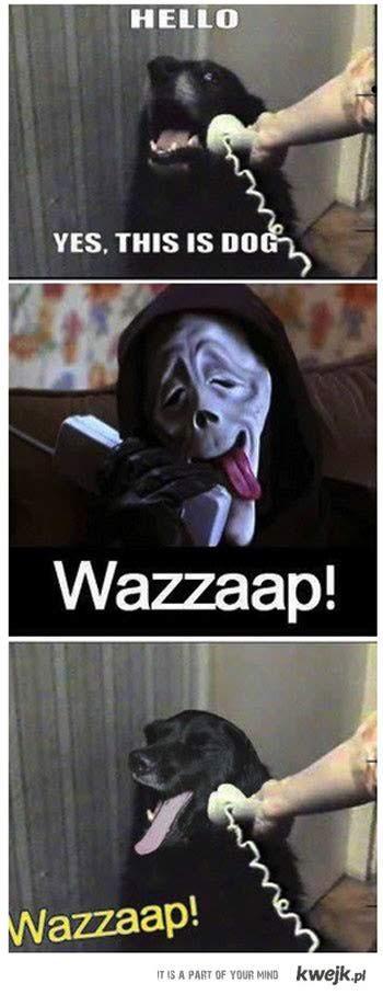 wazzzzuuuup