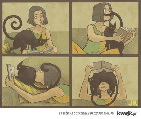 koty i czytanie