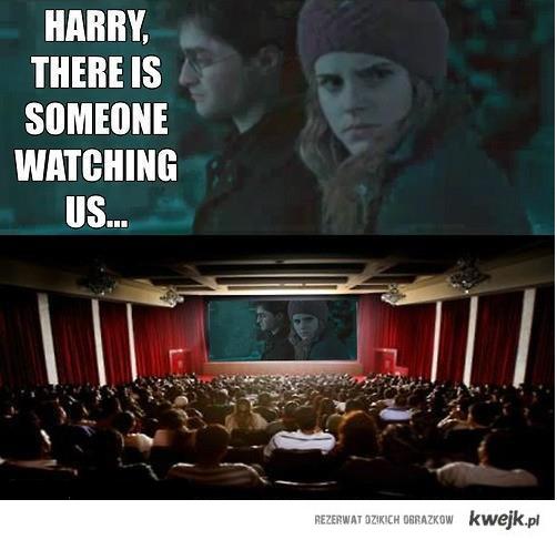 Harry?