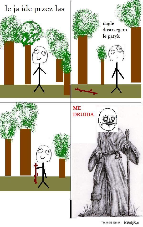 Le druid