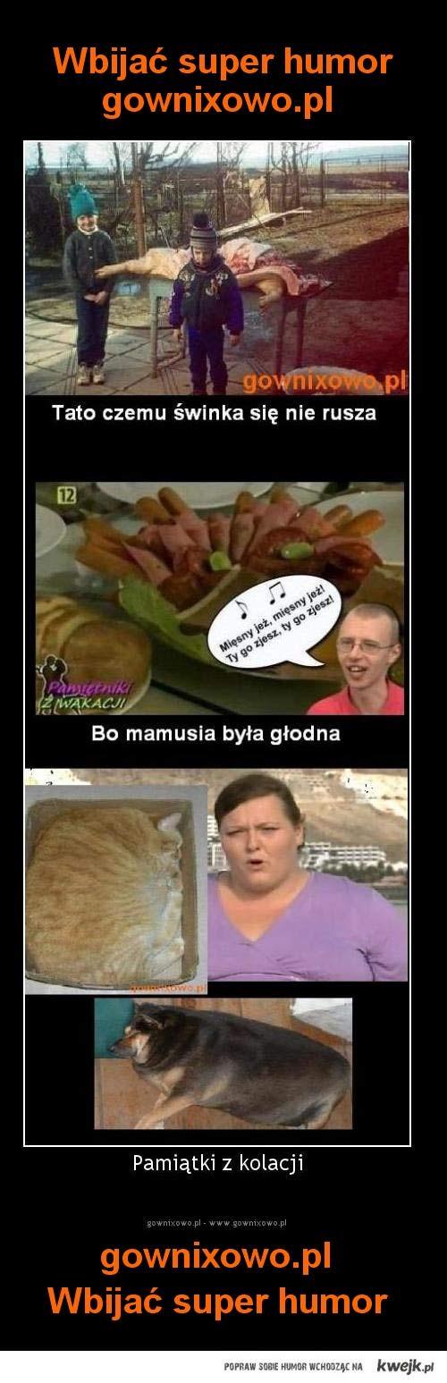 gownixowo.pl