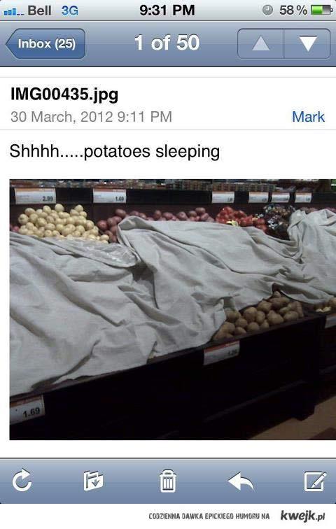 spiace ziemniaki