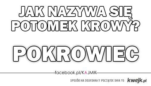 facebook.com/KAJMIK