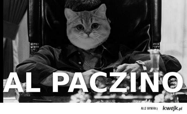 Al PACZino!