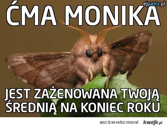 Ćma Monika