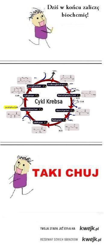 biochemia