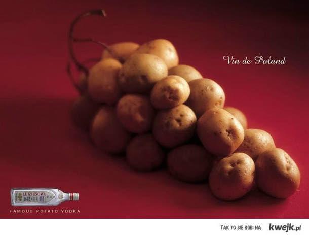 wino z ziemniaków