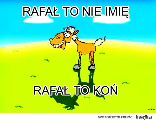Kon Rafal