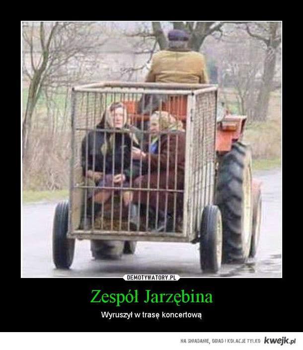 Jarzebina - trasa koncertowa