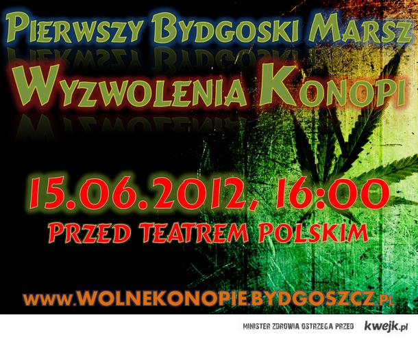 www.wolnekonopie.bydgoszcz.pl