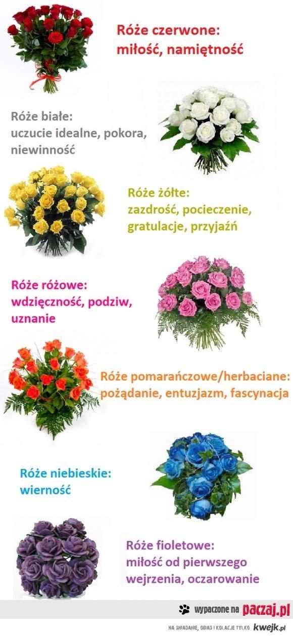 Dlatego też niebieskie i fioletowe róże są tylko sztuczne...