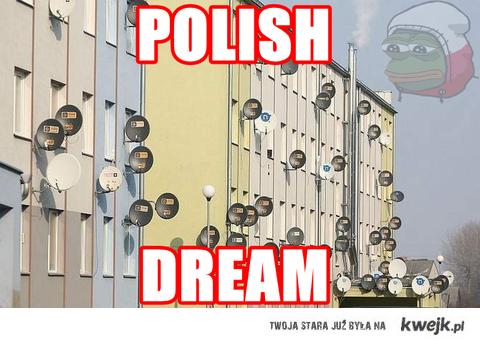 polish dream