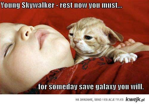 Rest you must
