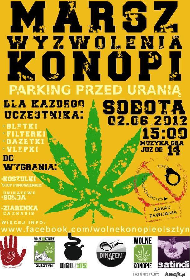 MWK Olsztyn 2012 - Zapraszam :)