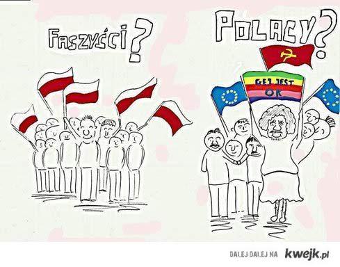 Polska w krzywy zwierciadle
