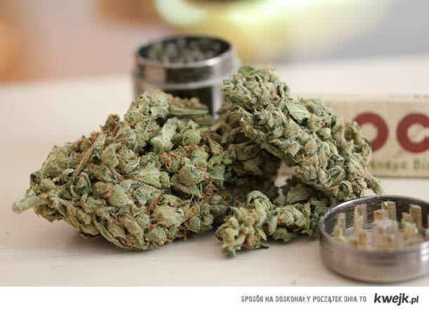 weed <3