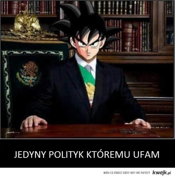 Jedyny polityk